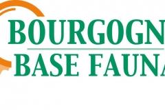 Logotype officiel de Bourgogne Base Fauna