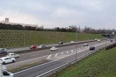 Afforestation du délaissé routier, domaine privé de l'Etat.