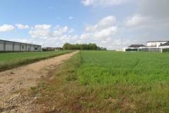 Terrain de l'afforestation pédagogique biodiverse de Chevigny Saint Sauveur au 17 mai 2021