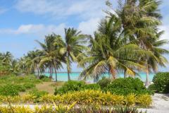 Polynésie-juillet-2013-2078-Small