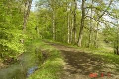 Week-end-Arnay-le-duc-mai-2012-001-Small