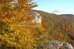baulme-la-roche-01-11-2010-003-Small