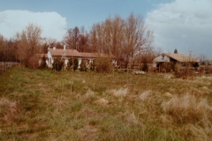 Le domaine de la chênevelle; commune de Lalande de Pomerol. année 1978