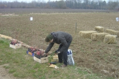 Plantation-Morey-St-Denis-10-mars-2011-001