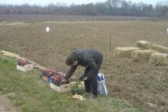 Plantation-Morey-St-Denis-10-mars-2011-002