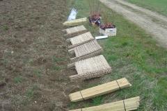 Plantation-Morey-St-Denis-10-mars-2011-003