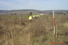 cfpb-Morey-22-03-2013-002