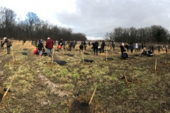 Afforestation-pédagogique-biodiverse-Saint-Julien-10-janvier-2020-2-Small