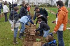 Engagement des collégiens du collège Saint François de Sales à Dijon sur le site de la Toison d'Or à Dijon. Année scolaire 2014-2015.