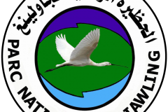 logotype-PND-2
