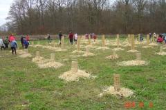 Plantation-cfpb-St-Julien-05-12-2014-004-Small