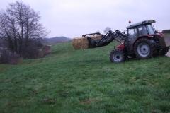Livraison de la paille est livrée le matin même sur le terrain par Mr BIZOUARD, père d'un écolier engagé dans le projet. Jeudi 25 novembre 2010. Création forestière pédagogique bipdiverse d'Arnay le Duc.
