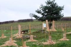 Plantation du premier bosquet biodivers. Création forestière pédagogique biodiverse d'Arnay le Duc. Jeudi 25 novembre 2010.