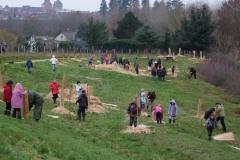 Les plus grands écoliers s'engagent. Création forestière pédagogique biodiverse d'Arnay le Duc  25 novembre 2010.