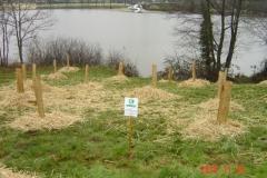 Installation des bosquets 25-11-2010 020 (Small)