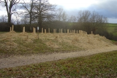 plantation second bosquet 5-12-2011 009 (Small)