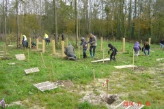 plantation Clenay 14-11-2014 002 (Small)