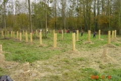 plantation Clenay 14-11-2014 003 (Small)