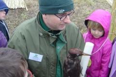 Présentation d'un pic noir (Dryocopus martius) aux écoliers sur le site de la création forestière pédagogique biodiverse de Morey Saint Denis Vendredi 24 novembre 2017.