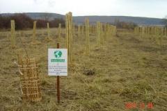 Le huitième bosquet biodivers est planté. Vendredi 24 novembre 2017. Création forestière pédagogique biodiverse de Morey Saint Denis.