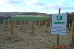Le premier bosquet biodivers est planté. Réhabilitation forestière pédagogique biodiverse de Reulle Vergy. 14 novembre 2017.