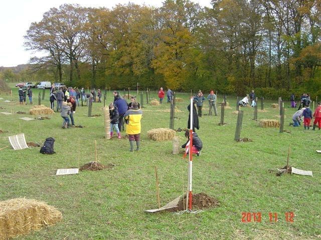 Plantation des deux premiers bosquets biodivers. Saint Germain le Rocheux. Mardi 12 novembre 2013.