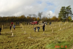 Plantation-St-Germain-18-11-2014-004-Small