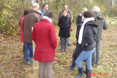 Plantation-St-Julien-23-11-2012-007-Small