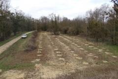 Plantation de la première parcelle de la forêt urbaine de Longvic