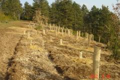 plantations-19-20-mars-2012-010-Small