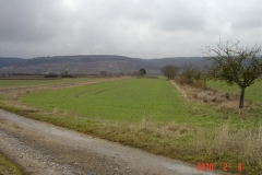 Terrain-du-futur-verger-conservatoire-de-Moey-Saint-denis-en-2011