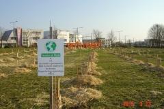 Plantation-bosquets-Toison-dOr-21-mars-2015-003-Small