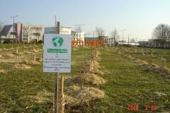 Plantation-bosquets-Toison-dOr-21-mars-2015-004-Small