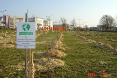 Plantation-bosquets-Toison-dOr-21-mars-2015-006-Small