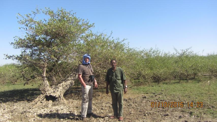 Foret de Mangrove dans le Diawling-1 (Small)