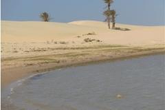 Zone d'hivernage mauritanien de la cigogne nicheuse en Côte d'Or