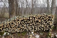 Stere de bois de chauffage (Small)