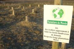 La création forestière pédagogique biodiverse de Morey Saint Denis