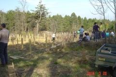 cfpb-Savigny-plantation-mars-2014-002-Small