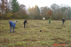 Plantation-St-Julien-23-11-2012-001