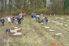 Plantation-St-Julien-23-11-2012-004