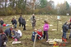 Plantation-St-Julien-23-11-2012-005