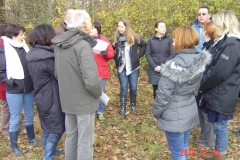 Plantation-St-Julien-23-11-2012-006