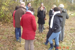 Plantation-St-Julien-23-11-2012-007