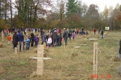 Plantation-St-Julien-23-11-2012-009