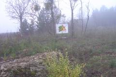 cfpb-Savigny-les-beaune-second-bosquet-01-12-2011-013